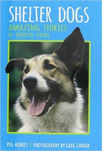 Shelter Dogs - Amazing Stories of Adopted Strays